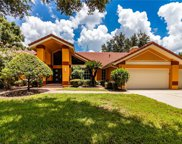 4902 Londonderry Drive, Tampa image