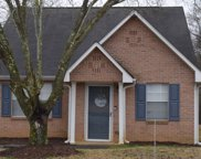 78 Pointe North, Carterville image