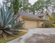 5 Honey Locust  Circle, Hilton Head Island image