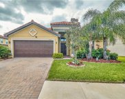 11933 Frost Aster Drive, Riverview image