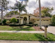 3337 Hickorywood Way, Tarpon Springs image