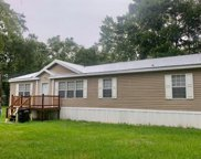 197 SW WEIRSDALE PL, Lake City image