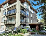 3205 Mountain Highway Unit 319, North Vancouver image