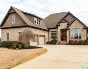17536 Windermere Drive, Athens image
