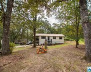 215 Lake Country Dr, Odenville image