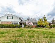 87 Meadow Woods  Road, Great Neck image