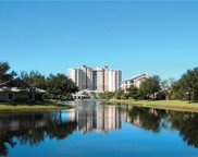 1001 Arbor Lake Dr Unit 203, Naples image