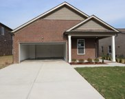 505 Burnley Way (Lot 169), Murfreesboro image