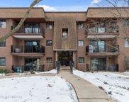 410 Melrose Avenue Unit #101, Glen Ellyn image