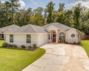 3064 MAJESTIC OAKS LN, Green Cove Springs image