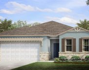 28156 Seasons Tide Ave, Bonita Springs image