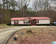 837 Meadow River Rd, Talladega image
