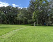 Boggy Terrace Drive, Kissimmee image