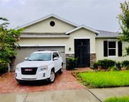 11514 Luckygem Drive, Riverview image