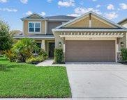 6113 Anise Drive, Sarasota image