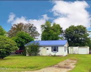 107 Forest Hill Drive, Havelock image