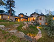 1325 Silver Rock Lane, Evergreen image