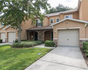10805 Great Carlisle Court, Riverview image