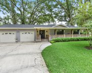10507 PAPPY RD, Jacksonville image