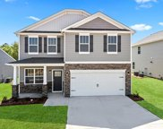 836 Larmore  Avenue Unit #4020, Charlotte image