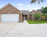 1233 Chateau Woods Parkway Drive, Conroe image