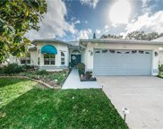 1104 Clippers Way, Tarpon Springs image