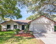 15804 Crying Wind Drive, Tampa image
