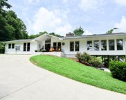 1175 Mud Hollow Rd, Hendersonville image