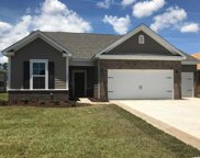 245 Copper Leaf Dr., Myrtle Beach image
