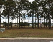 1171 Fiddlehead Way, Myrtle Beach image