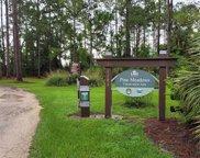 2126 Pine Meadows Golf Course Road, Eustis image