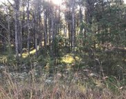 W Forest Way Unit Lot #539, Roscommon image