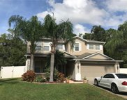 5644 Ansley Way Unit 1, Mount Dora image