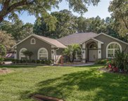 10722 Alico Pass, New Port Richey image