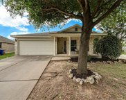 11906 Johnny Weismuller Ln, Austin image