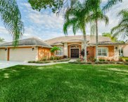 5529 Stag Thicket Lane, Palm Harbor image
