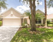 17917 Timber View Street, Tampa image