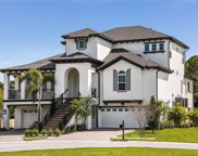 776 Harbor Palms Court, Palm Harbor image