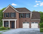263 Telavera Drive, Lot 226, White House image
