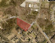 2218 Wessinger Road, Chapin image