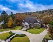 1627 Lake Cove Drive, Decatur image