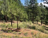 16348 Ouray Road, Pine image