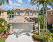 920 Golden Cane Dr, Weston image