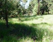 36 Blackfoot, Christopher Creek image