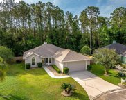 493 HERON NEST POINT, Orange Park image