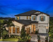 12858 Satin Lily Drive, Riverview image