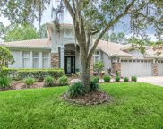 10228 Arbor Side Drive, Tampa image