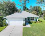 1859 Turnbull Lakes Drive, New Smyrna Beach image