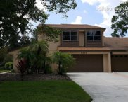 2310 Village Green Boulevard, Plant City image