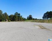 00 Highway 231 Unit 1, Ashville image